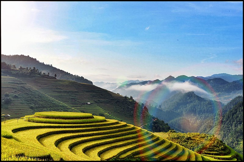 Autumn in bloom on Vietnam's rice terraces 2