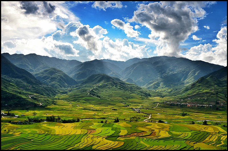Autumn in bloom on Vietnam's rice terraces 5