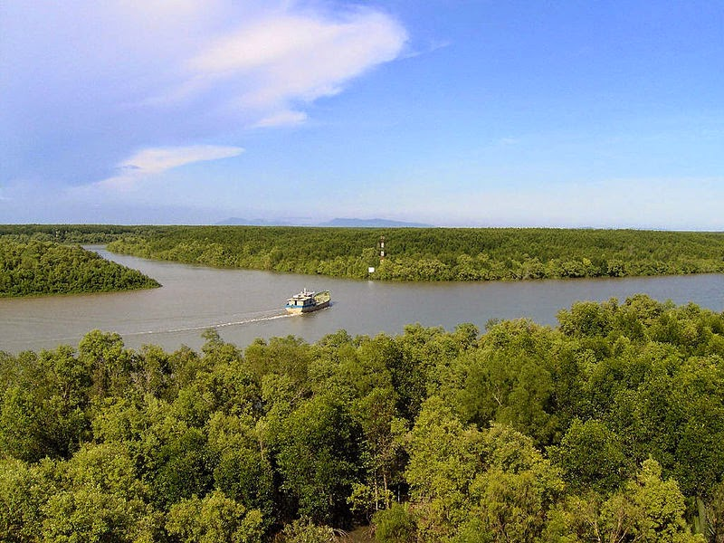 Can_Gio_Mangrove_Forest_-_top_venue_for_nature_lovers_04