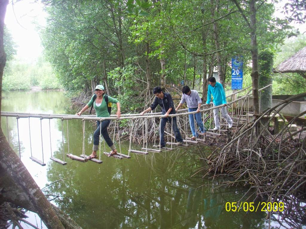 Can_Gio_Mangrove_Forest_-_top_venue_for_nature_lovers_06