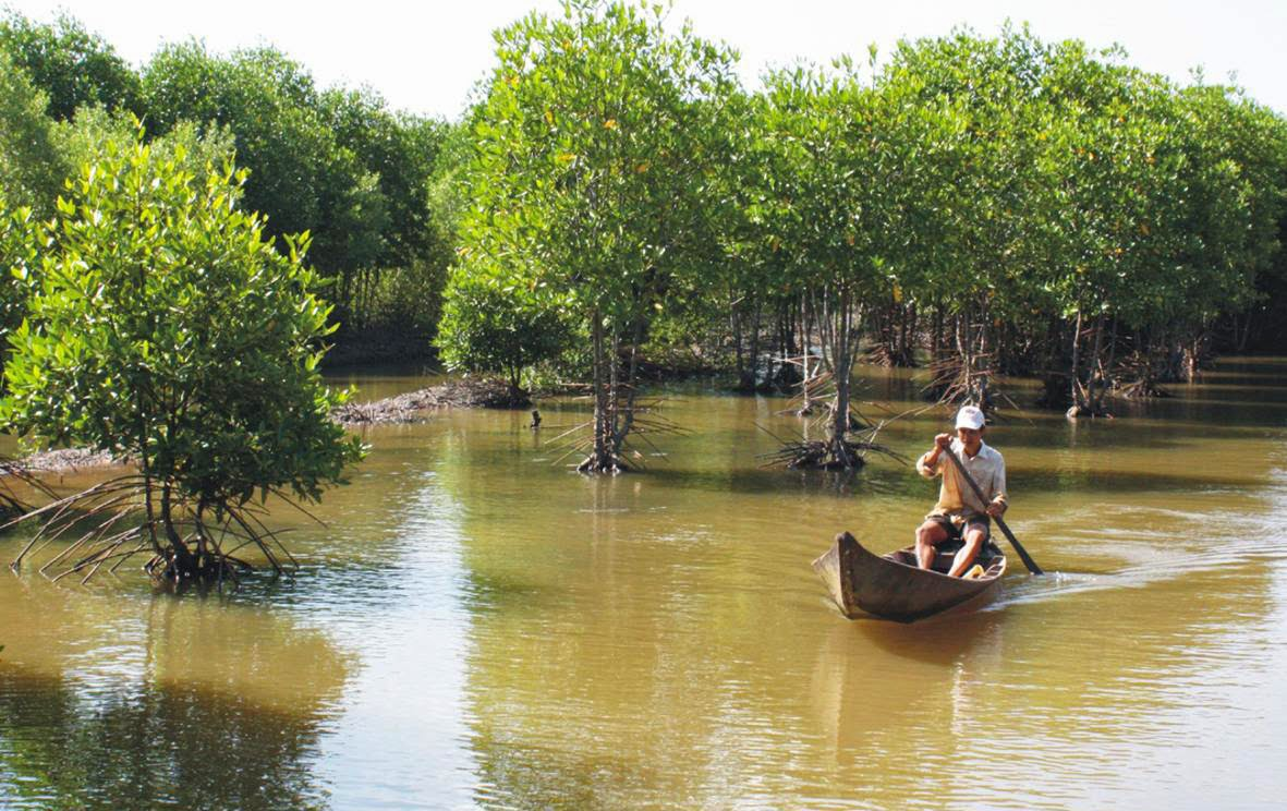 Can_Gio_Mangrove_Forest_-_top_venue_for_nature_lovers_10