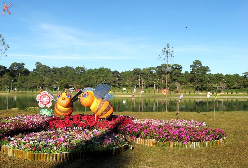 Dalat_promotes_citys_flower_brand_with_upcoming_festival_01