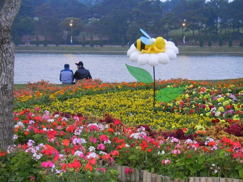 Dalat_promotes_citys_flower_brand_with_upcoming_festival_08