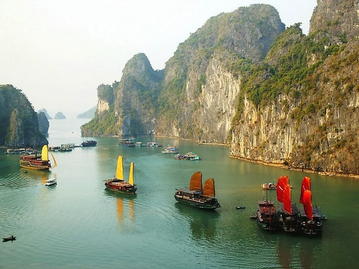 Halong_Bay_dolphin_cruise_tour_-_3_days_2_nights_03