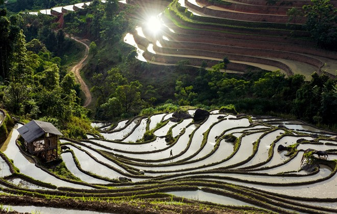 Hoang_Su_Phi_terraced_fields_in_rainy_season_05