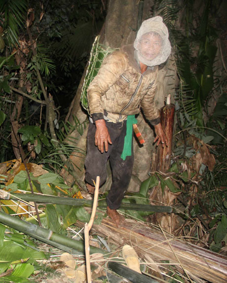 Hunting wild honey in central Vietnam 4