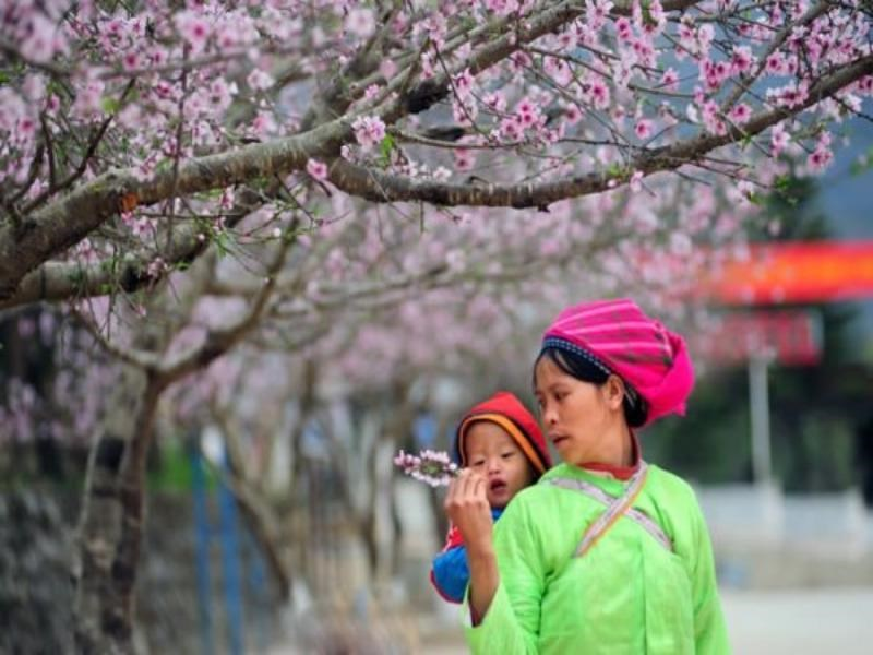 Its_springtime_again_in_Ha_Giang_01