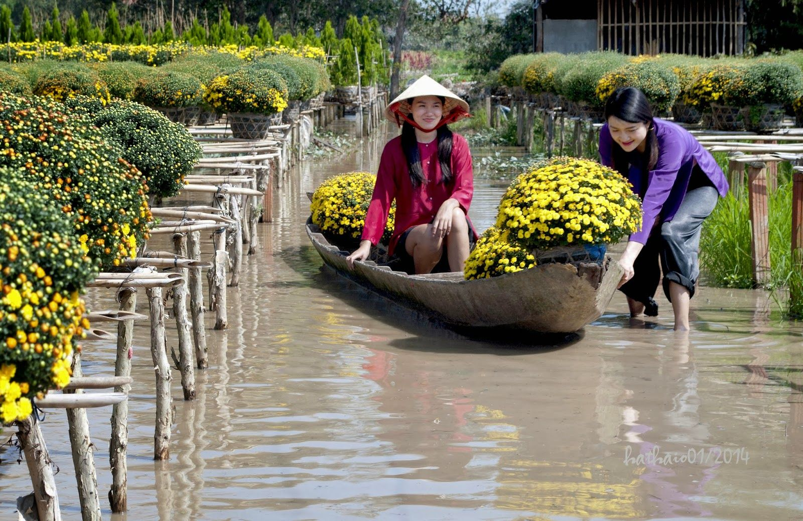 Sa_Dec_Flower_Gardens_in_Mekong_delta_Vietnam_05