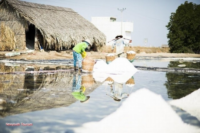 The-Salt-Fields_Near_Nha-Trang-Beach-city-Vietnam-11