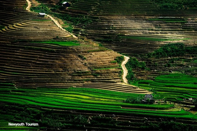 Vietnam-image-through-the-lens-of-travellers_12