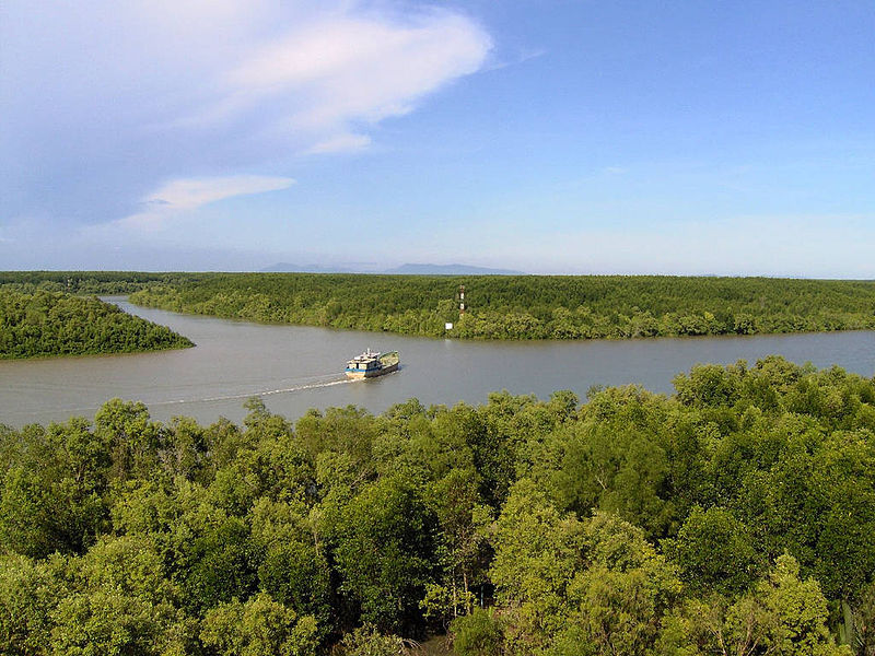 Can Gio Mangrove Forest - top venue for nature lovers