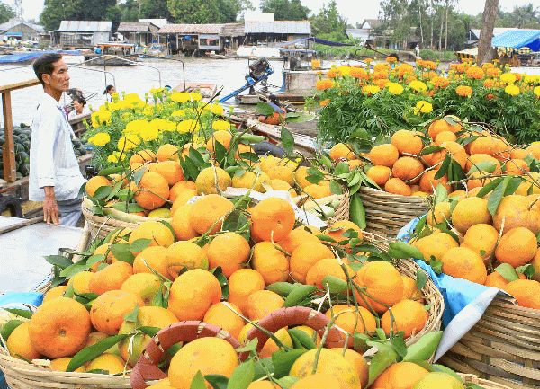 Mekong Delta trip 04days 03 nights